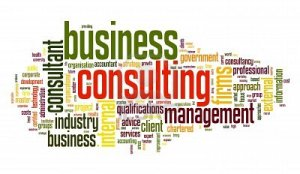 11596153-business-consulting-concept-in-word-tag-cloud-on-white-background2