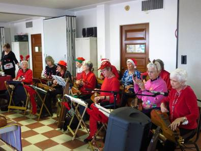 Tucson Dulcimer Ensemble