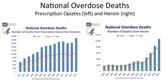 deaths from over drugging
