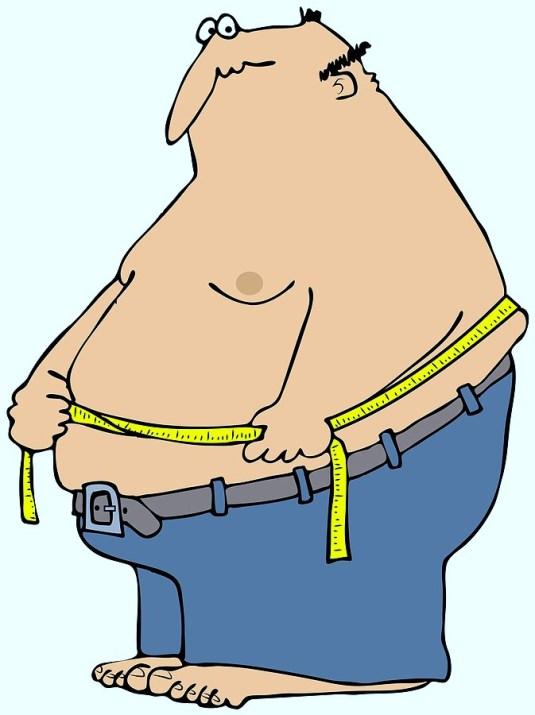 WWS-Obesity