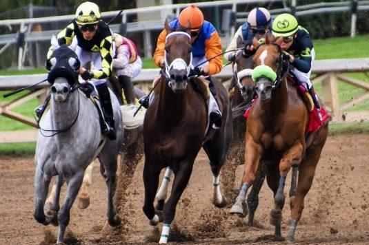horse-race-720x480