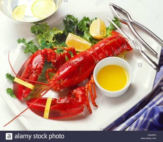 boiled-lobster-dinner-CNH3FH
