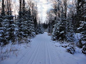 Wintertrail